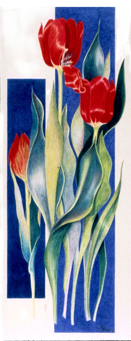 Red Tulips - SOLD
